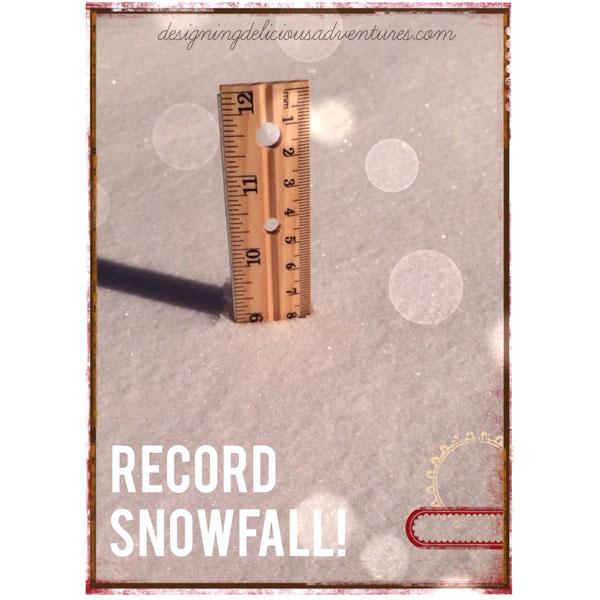 January-Snow-3