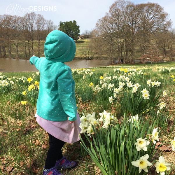Shaw Nature Daffodils